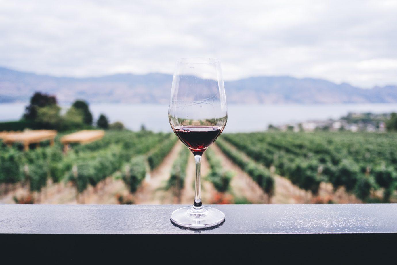 Ile tak naprawdę powinna kosztować butelka wina?